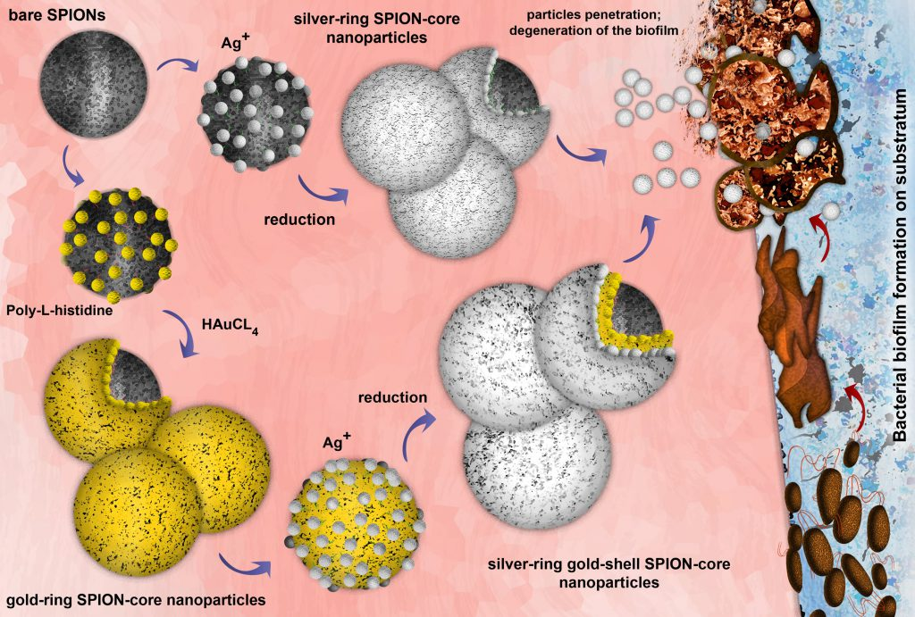 Image showing how antibacterial nanoparticles function
